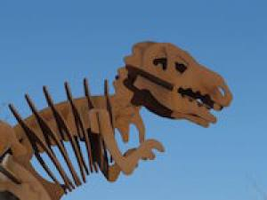 Are Performance Appraisals Pre-Historic?