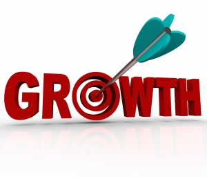 2013: The Year for Business Growth